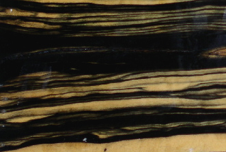 Black White Ebony 95